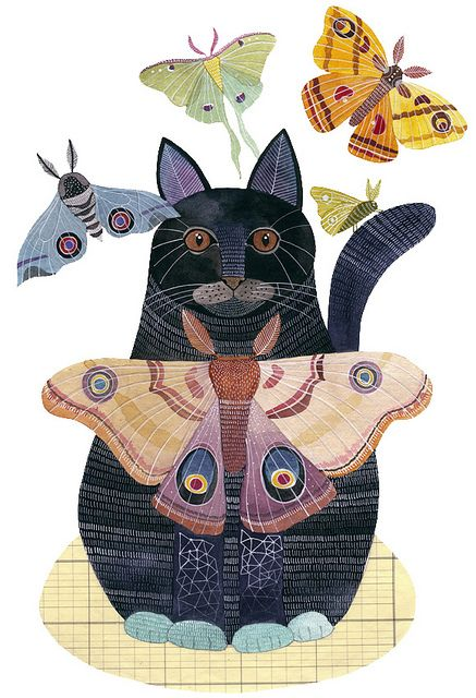 the cat and the butterflies #art #cats