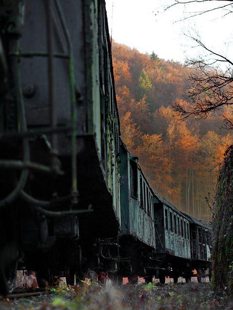 train..#jorgenca