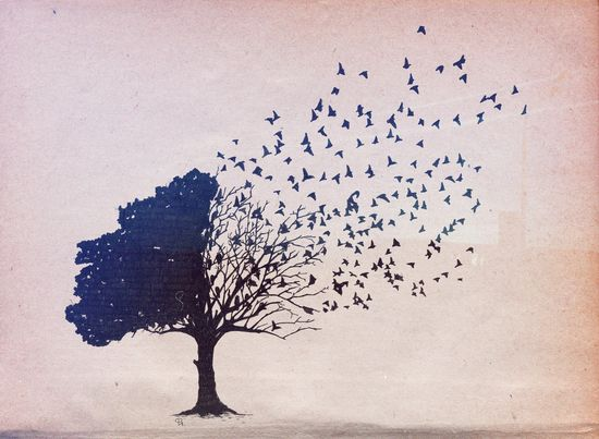 """This reminds me so much of The Lovely Bones, where the tree in the """"in-between"""" has leaves that become birds."""