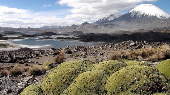 Cotacotani Lake (4495m altitude) by cobismith, via Flickr