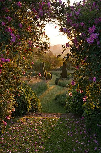 A natural arch with roses is a great way to lead through to another part of the garden