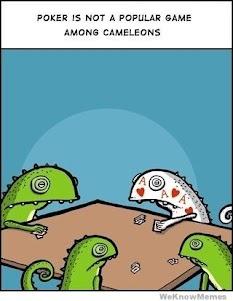 when chameleons play poker….