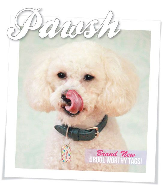 I'm a Pawsh Pet - Donation by Design