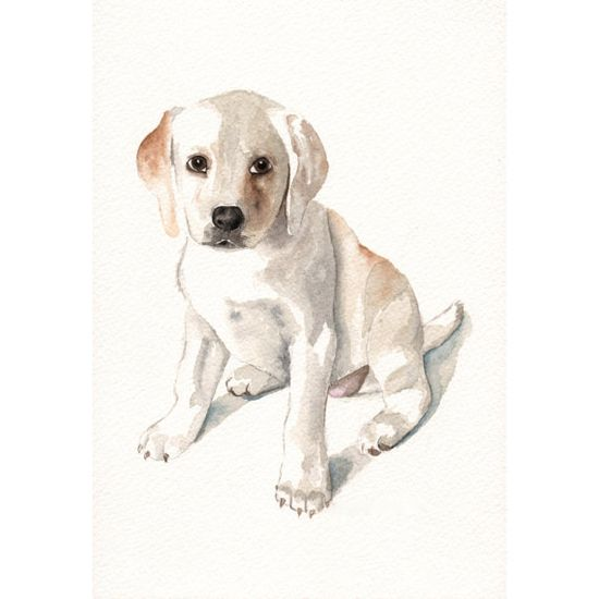 Labrador Painting ART  dog   print of watercolor by Splodgepodge, $15.00