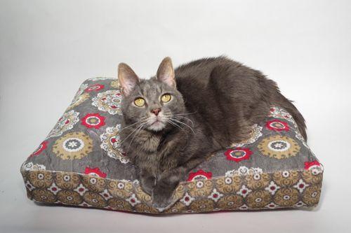 Pet Bed Tutorial