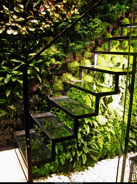 Great effect with the glass staircase and a vertical garden.