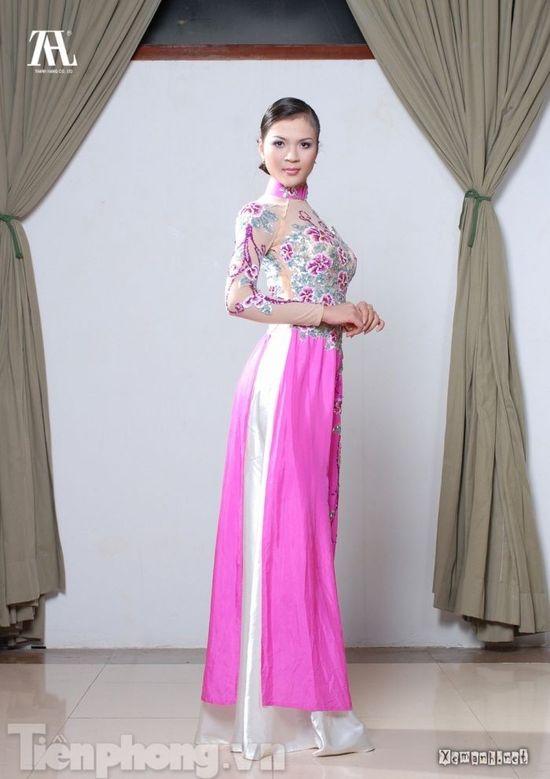 Vietnamese dress (ao dai)