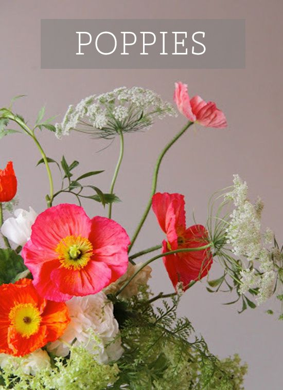 30+ Poppy flower arrangement ideas