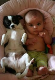cute but hope it was just for photo: dogs and babies,in close contact, need careful supervision!