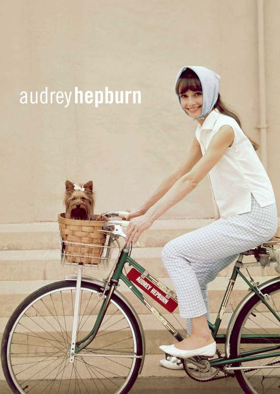 Audrey Hepburn – Vintage Bike – Yorkie Dog