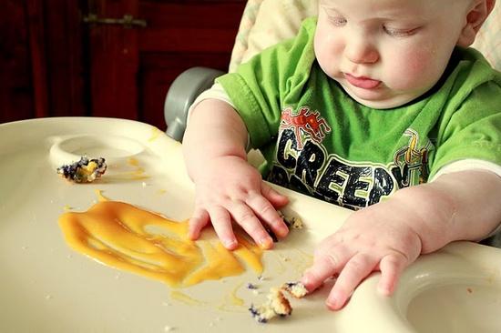 baby food exploration