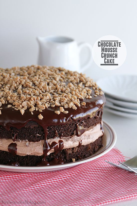 Chocolate Mousse Crunch Cake
