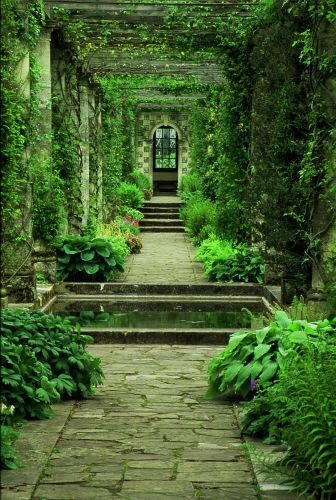 garden in green path with pool