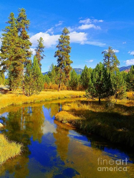 ? Fall Season at Clear Creek, Idaho