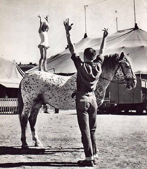 Circus pony girl.