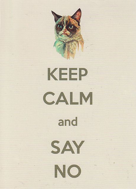 """grumpy cat """"Just Say NO"""""""