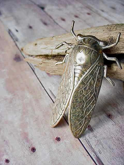 Gold Brooch Cicada Unusual Insect Bug Wings by MySelvagedLife, $18.00