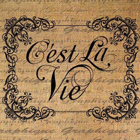 Cest La Vie French  Thats Life Text Typography Word by Graphique, $1.00