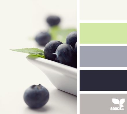 #Colour #paint #interior #design #inspiration