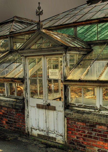 Old Greenhouse...Love this!