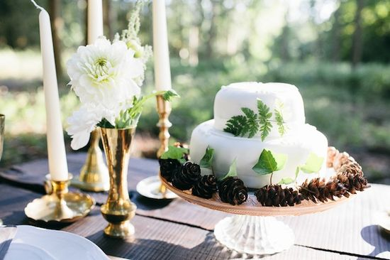 woodsy wedding inspiration - wedding cake surrounded by pine cones // Kytography