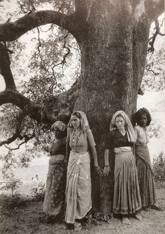 Pamela Singh, Chipko femmes Câlin arbre Pour Le Protéger D'ETRE DANS d'coupé le nord de l'Uttar Pradesh 1994