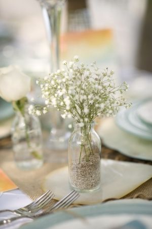 Baby's breath. YES!