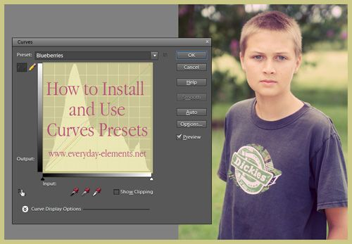 How to use curves presets in Photoshop and PSE - plus 11 FREE presets via @amandapadgett at everyday-elements...