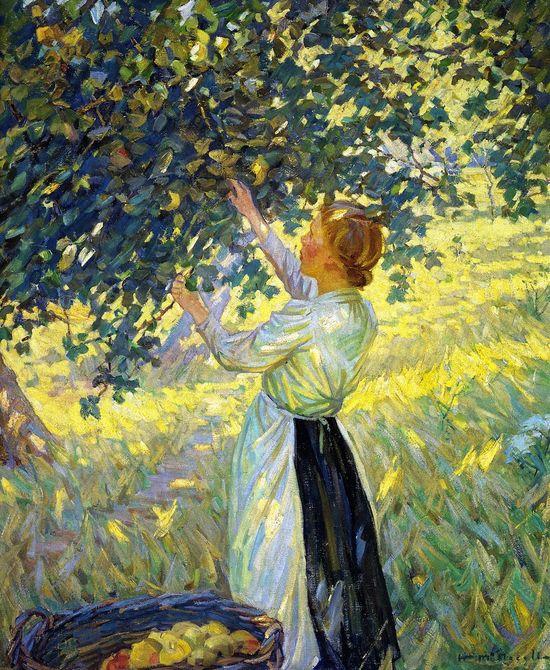 The Apple Gatherer (Helen Galloway McNicoll - )