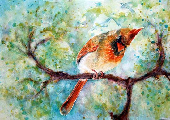 SpringTime She Cardinal  original watercolor  by CheyAnneSexton