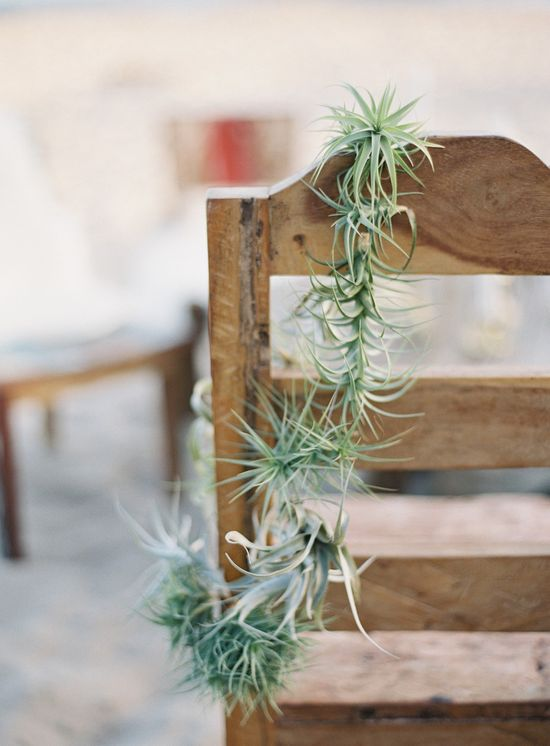 air plant wreath draped from the chair