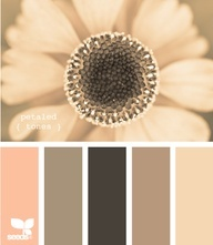 Gorgeous! I'm in love a little bit (website that has 100s of color pallet co