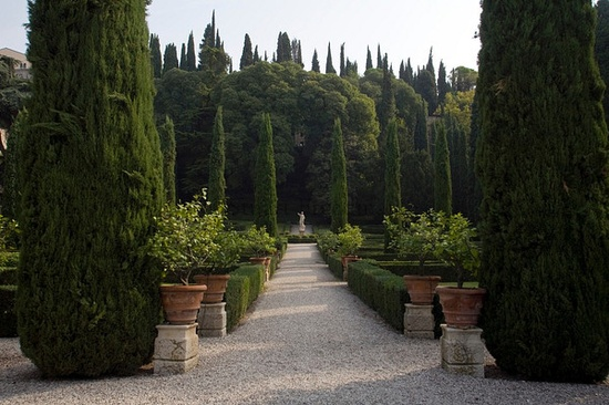 Statues in the Giardino Giusti in Verona, Italy.The Giardino Giusti is one of the finest Renaissance gardens in Italy was laid out in 1580..
