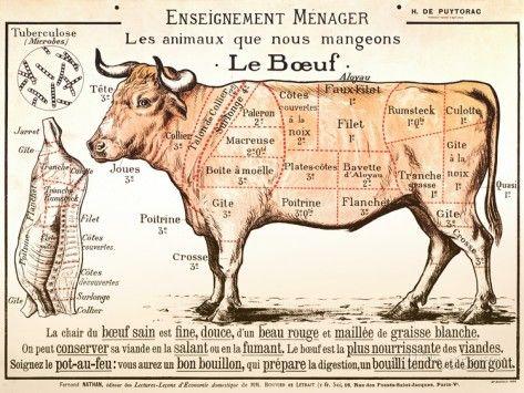 Beef Diagram Posters