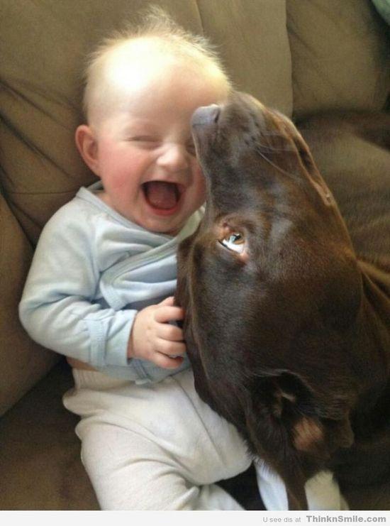 Cute baby with Labrador