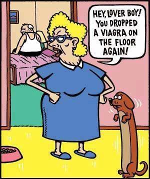 HILARIOUS!! OMG shut the door funny!!!