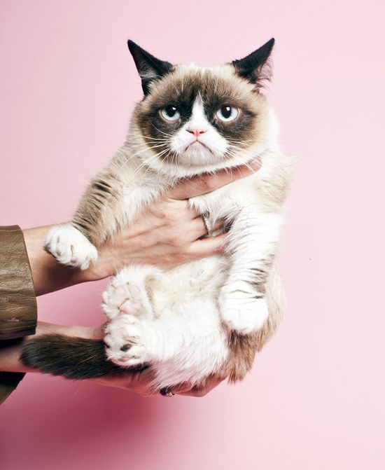 Grumpy cat visits Time and isn't impressed at all.
