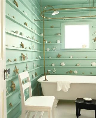 bathroom shell collection: great idea... beautiful wall color