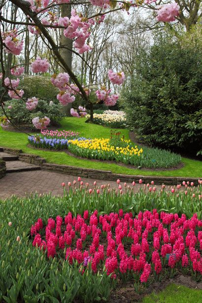 Spring in this beautiful flower garden.