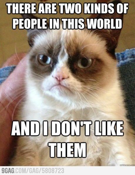 Oh grumpy cat!