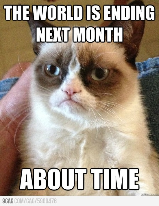 Oh grumpy cat...