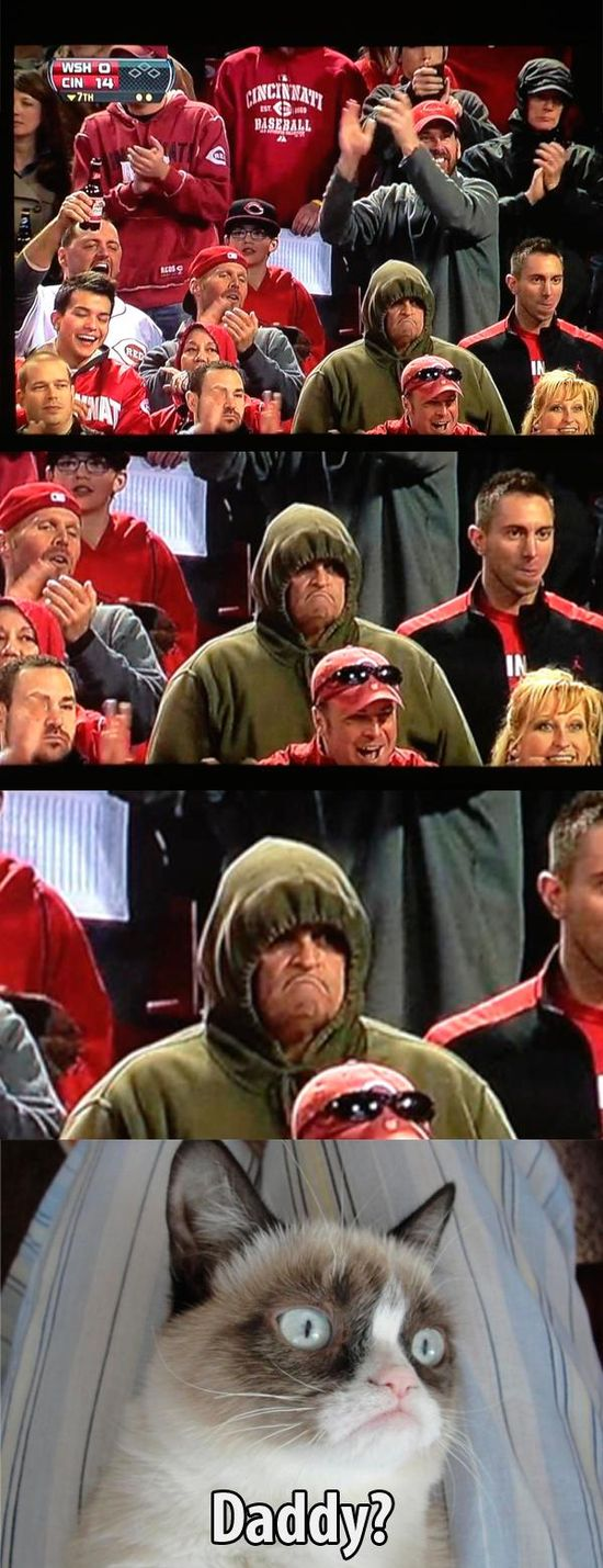 Grumpy cat finds her dad.... At a Reds game yay boy!!!
