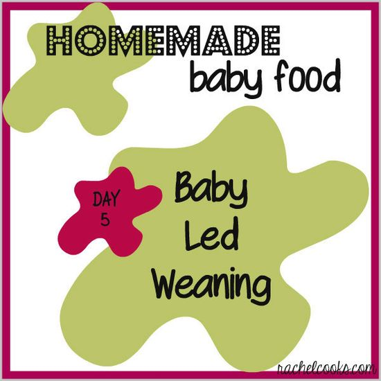 Homemade Baby Food: Baby Led Weaning
