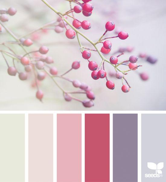 Color Nature | desig