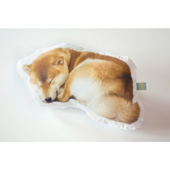 I'm so getting one of these! Custom pet pillow photo cushion.