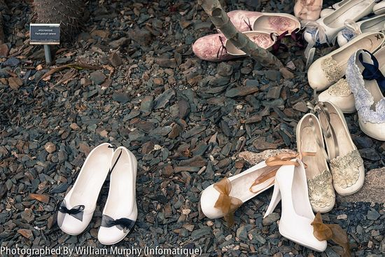 Walk In My Shoes By Maggie O'Connor 04
