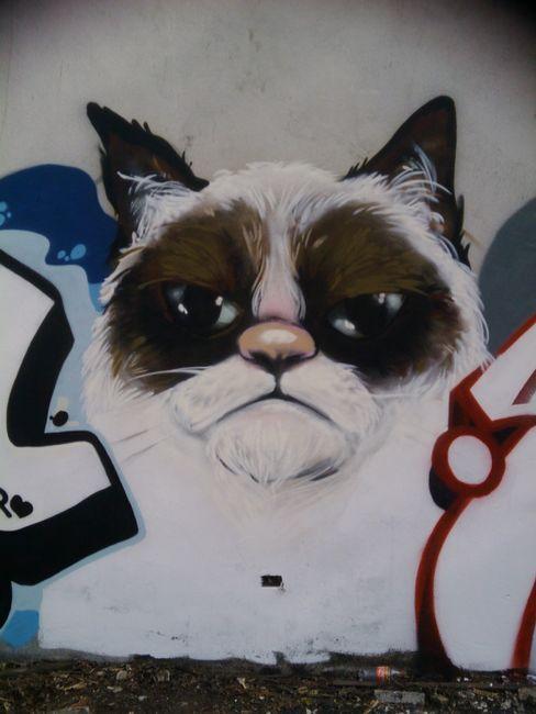 Grumpy Graffiti #GrumpyCat #FanArt