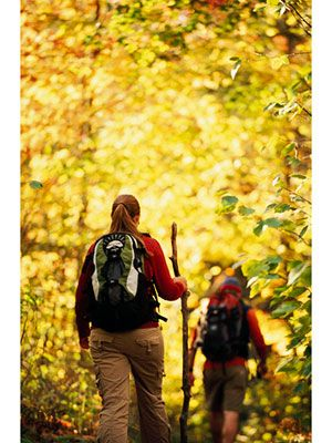 The Superior Hiking Trail --#MSPgetawaypinfest