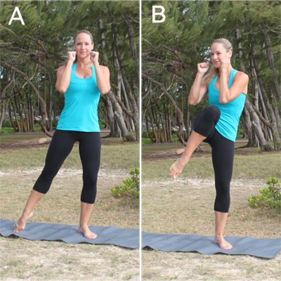 workout exercises  flatten your abs and shed stomach fat