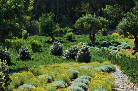 Landscape design - Home and Garden Design Ideas